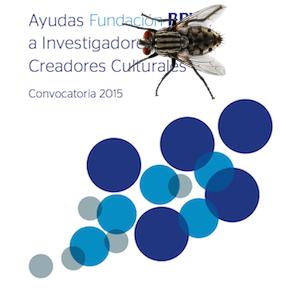 Ayudas Fundación BBVA a investigadores y creadores culturales